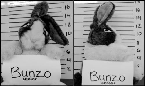 bunzo-mug-shot1